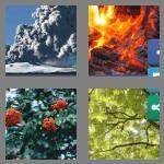4-pics-1-word-3-letters-ash-cheats-8013049