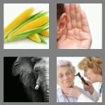 4-pics-1-word-3-letters-ear-cheats-8752591