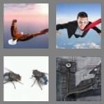 4-pics-1-word-3-letters-fly-cheats-5210394