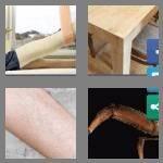 4-pics-1-word-3-letters-leg-cheats-8620586