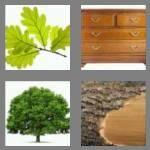 4-pics-1-word-3-letters-oak-cheats-7777298