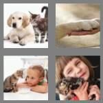 4-pics-1-word-3-letters-pet-cheats-6168515
