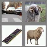 4-pics-1-word-3-letters-ram-cheats-4634125