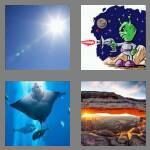4-pics-1-word-3-letters-ray-cheats-5718324