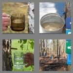 4-pics-1-word-3-letters-sap-cheats-3522398