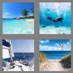 4-pics-1-word-3-letters-sea-cheats-8948248