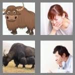 4-pics-1-word-3-letters-yak-cheats-3586203