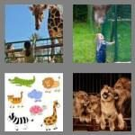 4-pics-1-word-3-letters-zoo-cheats-5815111
