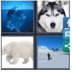 answer-arctic-2
