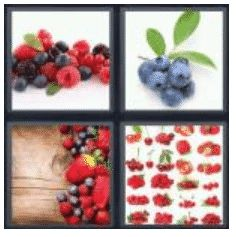 answer-berries-2