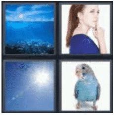 answer-blue-2