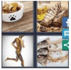 answer-bones-2