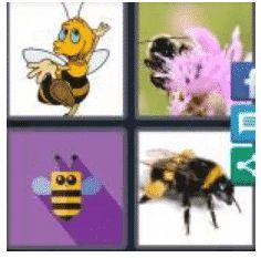 answer-bumblebee-2