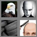 cheats-4-pics-1-word-4-letters-bald-3665874
