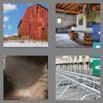 cheats-4-pics-1-word-4-letters-barn-2824304