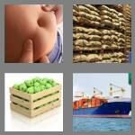 cheats-4-pics-1-word-4-letters-bulk-1295632
