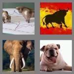 cheats-4-pics-1-word-4-letters-bull-3835951