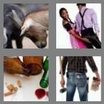 cheats-4-pics-1-word-4-letters-butt-5006268