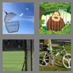 cheats-4-pics-1-word-4-letters-cage-9303506