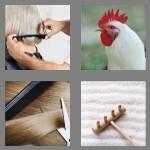 cheats-4-pics-1-word-4-letters-comb-6613396