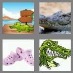 cheats-4-pics-1-word-4-letters-croc-3198788