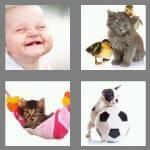 cheats-4-pics-1-word-4-letters-cute-8443726