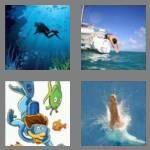 cheats-4-pics-1-word-4-letters-dive-4892301
