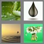 cheats-4-pics-1-word-4-letters-drop-8931560