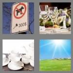 cheats-4-pics-1-word-4-letters-fine-8580322
