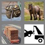 cheats-4-pics-1-word-4-letters-haul-3179590