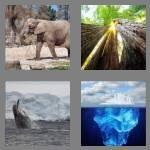 cheats-4-pics-1-word-4-letters-huge-1230951