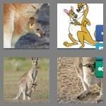 cheats-4-pics-1-word-4-letters-joey-9671982