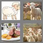 cheats-4-pics-1-word-4-letters-lamb-7241868