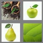cheats-4-pics-1-word-4-letters-leaf-2677108