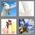 cheats-4-pics-1-word-4-letters-milk-2084091