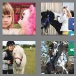 cheats-4-pics-1-word-4-letters-pony-6256949