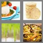 cheats-4-pics-1-word-4-letters-rice-5716079