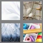 cheats-4-pics-1-word-4-letters-silk-1734016