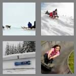 cheats-4-pics-1-word-4-letters-sled-5842264