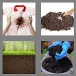 cheats-4-pics-1-word-4-letters-soil-9347569