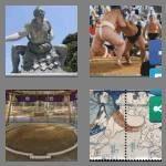 cheats-4-pics-1-word-4-letters-sumo-9103162