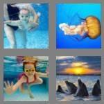 cheats-4-pics-1-word-4-letters-swim-5443319
