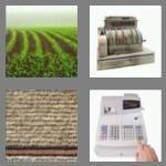 cheats-4-pics-1-word-4-letters-till-1868306