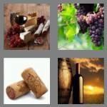 cheats-4-pics-1-word-4-letters-wine-1032464
