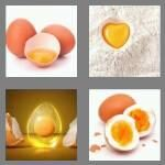 cheats-4-pics-1-word-4-letters-yolk-6545902