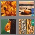 cheats-4-pics-1-word-5-letters-amber-7086835