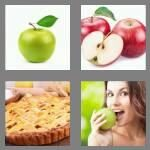 cheats-4-pics-1-word-5-letters-apple-9507294