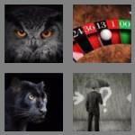 cheats-4-pics-1-word-5-letters-black-9860217