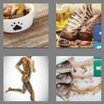 cheats-4-pics-1-word-5-letters-bones-5920460