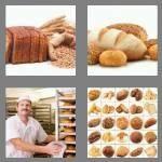 cheats-4-pics-1-word-5-letters-bread-5863878